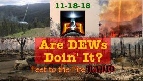 DEWs Wildfires